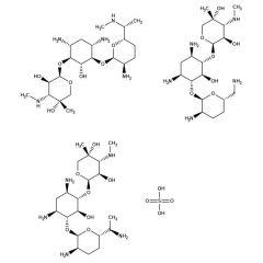 GENTAMICIN SULFATE, 10 ml