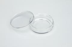 Thermo Scientific™️ Nunc™️ Glass Bottom Dishes
