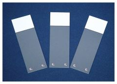 Fisherbrand™ Superfrost™ Excell™ Microscope Slides