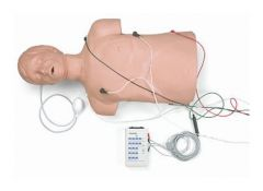 Simulaids™ Defibrillation/CPR Trainer