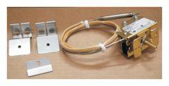 Thermo Scientific™ Thermostat