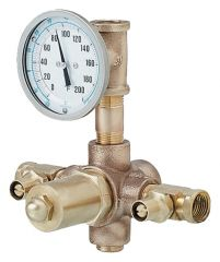 Fisherbrand™ Thermostatic Mixing Valve