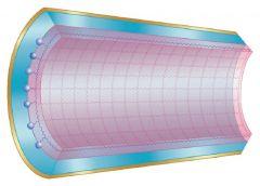 Trajan™ SolGel-WAX™ GC Capillary Columns