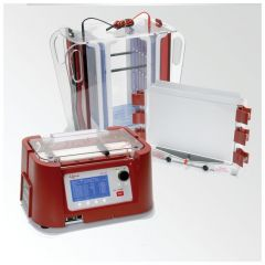 Hoefer™ Large 2-Dimensional Electrophoresis Systems