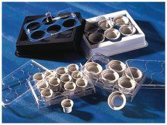 Corning™ Costar™ Netwell™ Reagent Trays