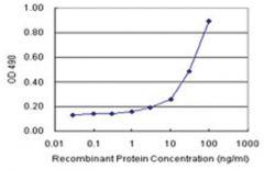 anti-F11R Matched Antibody Pair, Abnova