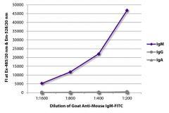 IgM Goat anti-Mouse, FITC, Polyclonal, Southern Biotech™