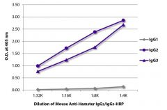 IgG2/IgG3 Mouse anti-Hamster, HRP, Clone: SB139e, Southern Biotech™