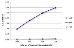 IgM Goat anti-Human, HRP, Polyclonal, Southern Biotech™