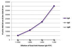 IgA Goat anti-Human, FITC, Polyclonal, Southern Biotech™