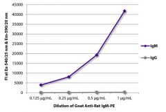IgM Goat anti-Rat, R-PE, Polyclonal, Southern Biotech™