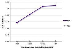 IgM Goat anti-Rabbit, Biotin, Polyclonal, Southern Biotech™