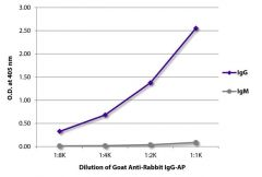 IgG Goat anti-Rabbit, AP, Polyclonal, Southern Biotech™