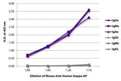 Kappa Mouse anti-Human, AP, Clone: SB81a, Southern Biotech™