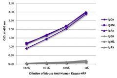 Kappa Mouse anti-Human, HRP, Clone: SB81a, Southern Biotech™