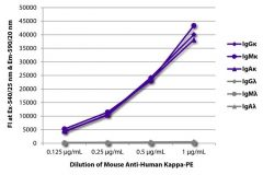Kappa Mouse anti-Human, R-PE, Clone: SB81a, Southern Biotech™