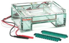 Thermo Scientific™ Owl™ EasyCast™ B2 Mini Gel Electrophoresis System