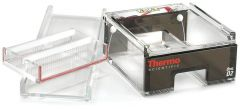 Thermo Scientific™ Owl™ D2 Wide-Gel Electrophoresis System
