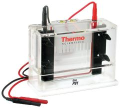 Thermo Scientific™ Owl™ P81 Single-Sided Vertical Electrophoresis System, 10 x 10cm gel size, 150mL buffer volume