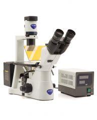 Inverted HBO fluorescence microscope, IOS, multi-plug/CH