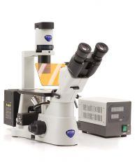 Inverted HBO fluorescence microscope, IOS, multi-plug/UK