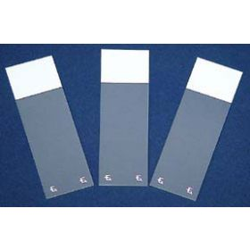 Fisherbrand Superfrost Excell Microscope Slides