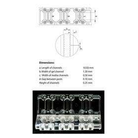 3D Cell Culture Chip