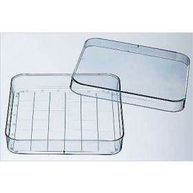 Fisherbrand™ Square Disposable Petri Dish with Grid