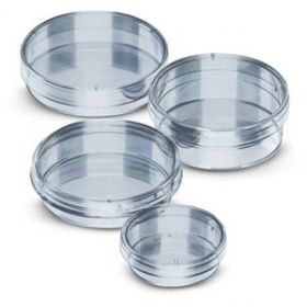 Fisherbrand™ Polystyrene Petri Dishes