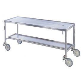 Thermo Scientific™ Shandon™ AN-54 Transportable Dissecting Table, AN-54 Transportable Dissecting Table with Shelf