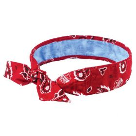 Ergodyne™ Chill-Its™ 6700CT Evaporative Cooling Tie Bandana with Cooling Towel