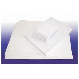 Azer Scientific Formalin Absorbent Shipping and Grossing Pads