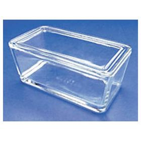 DWK Life Sciences Wheaton™ Glass Staining Dishes for 50 Slides