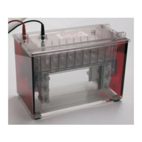 Hoefer™ SE640 Wide-Mini Vertical Electrophoresis Unit