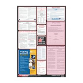 Accuform Signs Posters: Combined State, Federal and OSHA Labor Laws