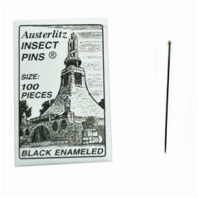 Eisco™ Premium Museum Grade Dissection Pins