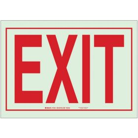 Brady™ Glow-In-The-Dark™ Exit and Directional Signs