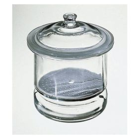 Fisherbrand™ Desiccator with Porcelain Plate, Inside Dia.: 250mm; Height 324mm