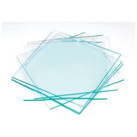 American Educational Products Glass Plates