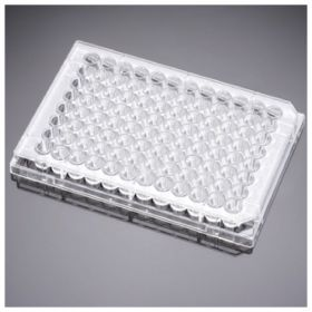 Corning™ BioCoat™ Gelatin Multiwell Plate