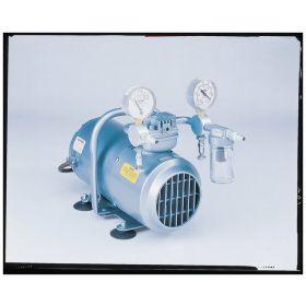 Pressure/Vacuum Pump