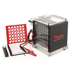 Thermo Scientific™ Owl™ VEP-2 Mini Tank Electroblotting System