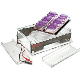 Thermo Scientific™ Owl™ A2-OK Multiple Gel Electrophoresis System