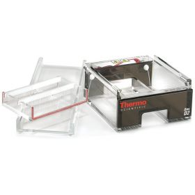 Thermo Scientific™ Owl™ D2 Wide-Gel Electrophoresis System with Buffer Exchange Ports