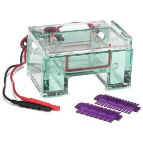 Thermo Scientific™ Owl™ EasyCast™ B1A Mini Gel Electrophoresis System with Buffer Exchange Ports