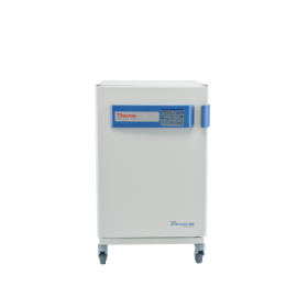 "Thermo Scientificâ""¢ Formaâ""¢ Steri-Cycle i160 CO2 Incubator with Copper Chambers"